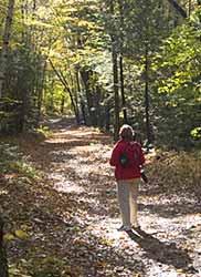 Historic Quarry - access path